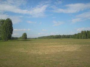 неперспективное село Кривуши