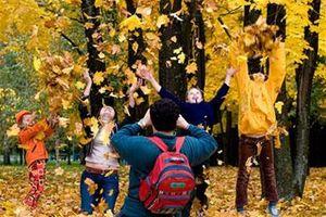 Каникулы у кременчугских школьников с 28 октября.