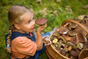 Профилактика отравлений грибами в Украине