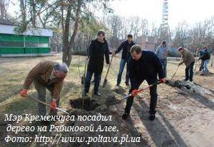 Мэр Кременчуга посадил дерево на Рябиновой Алее.