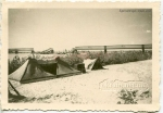 Палатки на берегу Днепра в Кременчуге. 1941 год. - фото 1464
