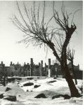Центральная часть города Кременчуга разрушенная фашистами. Зима 1943 года. - фото 368