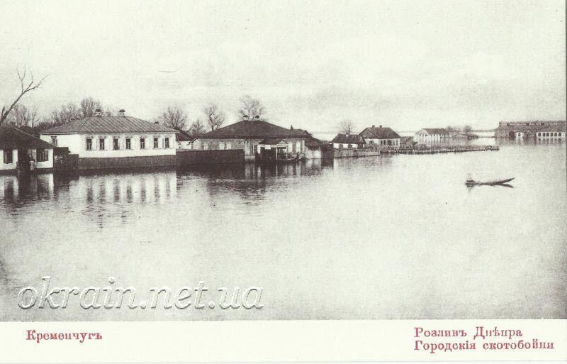 Городские скотобойни. Кременчуг 1907 год - фото 1284