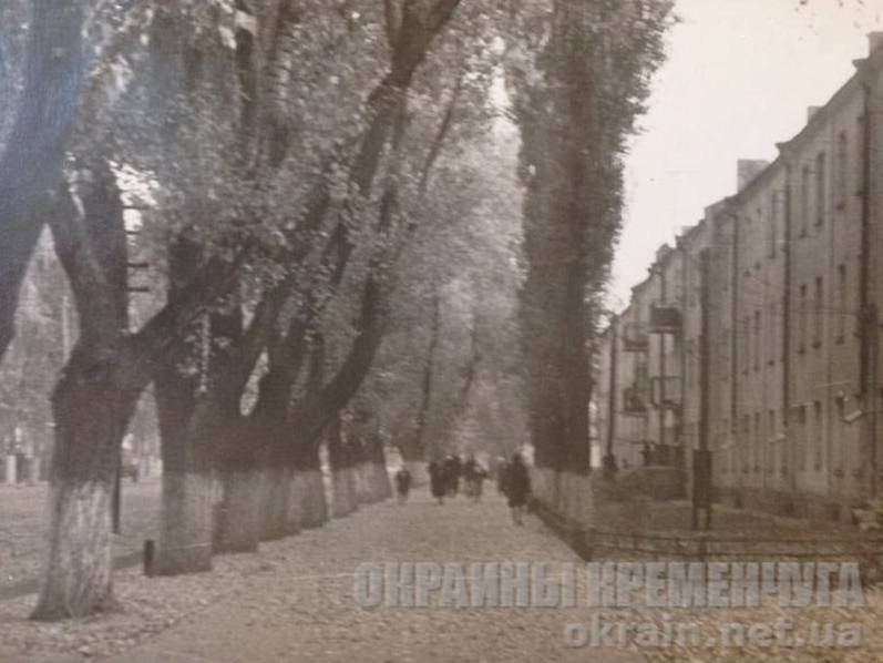 На улице Приходько в Крюкове  – фото №1723