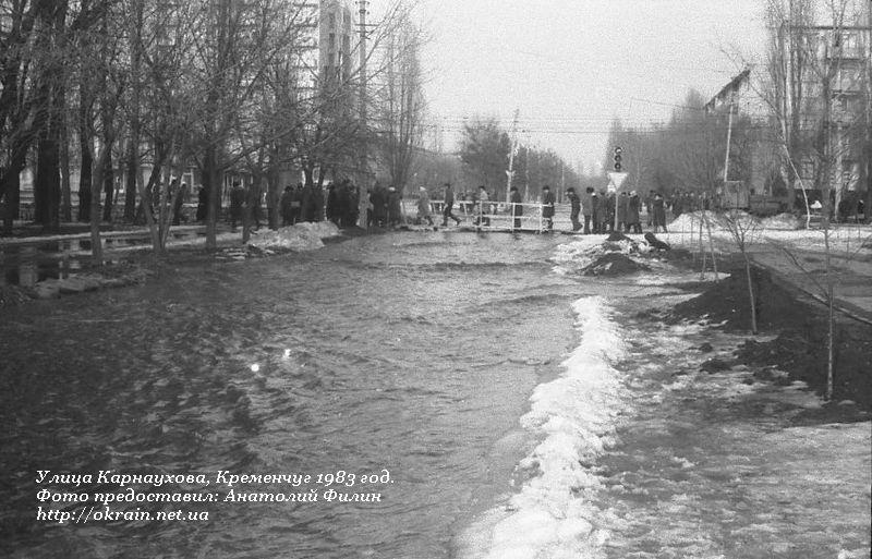 Улица Карнаухова в Кременчуге. 1983 год. - фото 1102