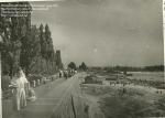 Набережная Днепра. Кременчуг 1953 год. - фото 891