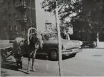 Телега и ГАЗ-21 на улице Кременчуга - фото 1657