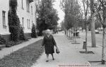 Дом №26 по ул. К.Либкнехта в Крюкове 1977 год - фото 1503