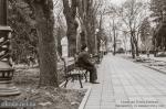 Сквер им. Олега Бабаева в Кременчуге - фото 1456