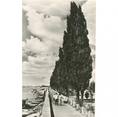 Набережная Кременчуг 1958 год - фото № 450