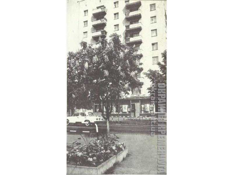 Магазин «Политкнига» Кременчуг 1981 год фото номер 1726