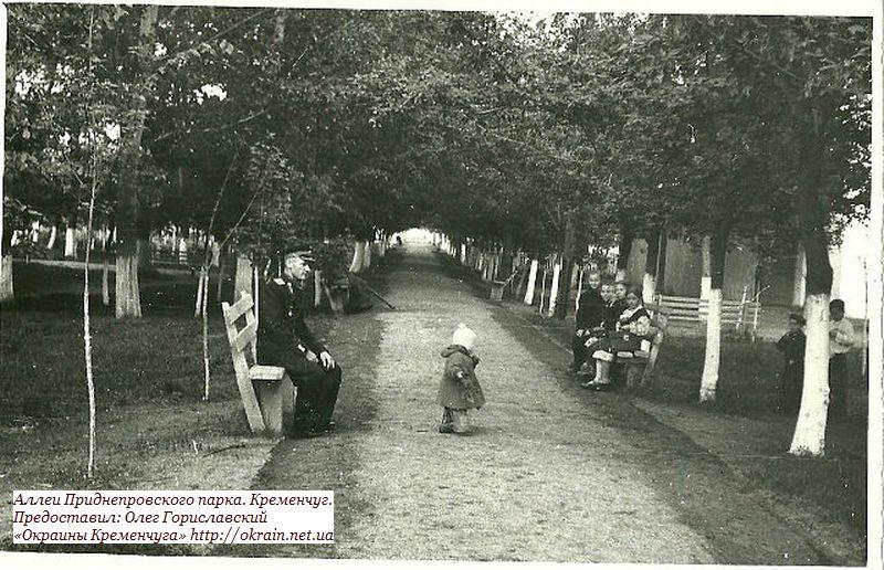 Аллеи Пионерского сквера. Кременчуг. - фото 886