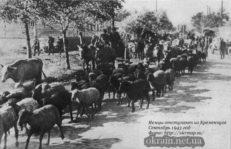 Немцы отступают из Кременчуга. Сентябрь 1943 год - фото 922