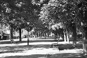 История сквера имени Пономаренко в Кременчуге