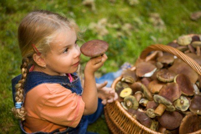 Отравление грибами - как избежать